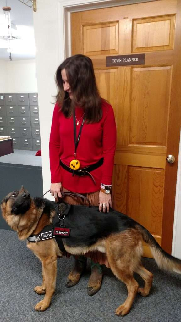 service dog training College for Pets Plymouth NH